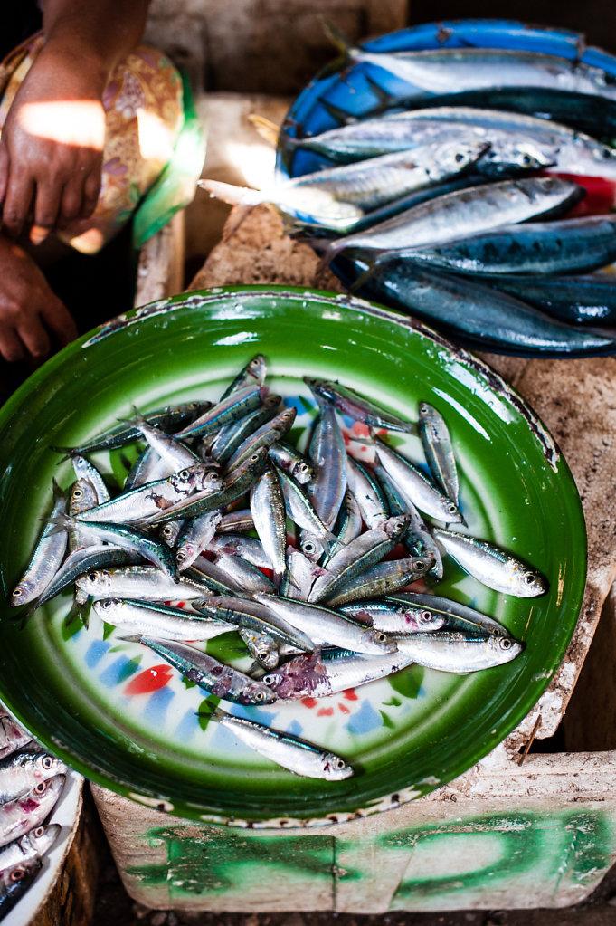 Fish Market / Indonesia