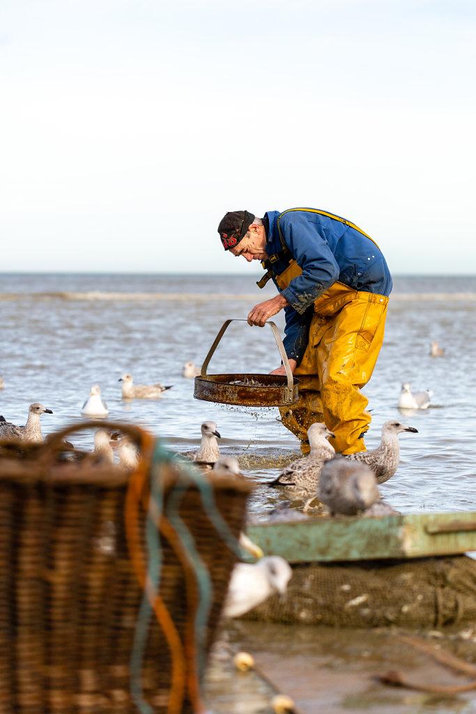 Paardenvisserij Fishers / Belgium