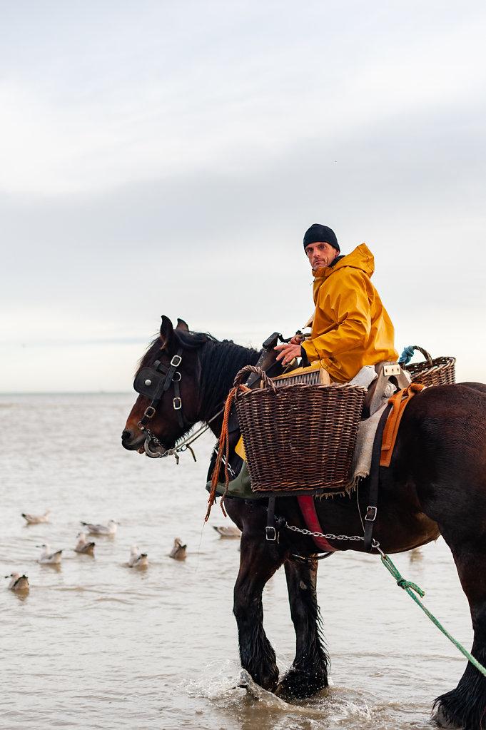 Paardenvisserij-EquinoxLightPhoto-1.jpg